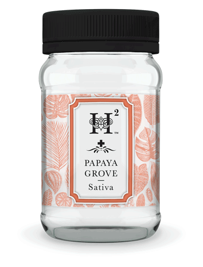 H2 Papaya Grove Sativa Medical Marijuana Jar
